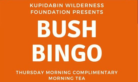 Bush Bingo - Thursday Mornings